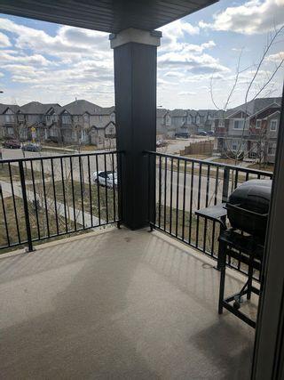 Photo 13: 302, 530 Watt Boulevard in Edmonton: Condo for rent