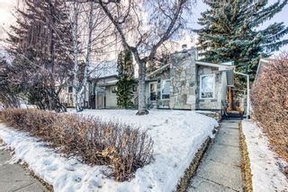 Photo 4: 345 Whitney Crescent SE in Calgary: Willow Park Detached for sale : MLS®# A1061580