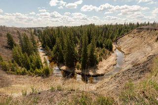 Photo 49: 2047 SADDLEBACK Road in Edmonton: Zone 16 Carriage for sale : MLS®# E4225755