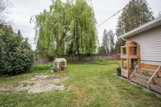 Photo 26: 22088 SELKIRK Avenue in Maple Ridge: West Central House for sale : MLS®# R2573871