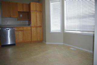 Photo 8: 20145 53 Avenue in Edmonton: Zone 58 House for sale : MLS®# E4252938