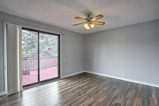 Photo 21: 155 Templevale Road NE in Calgary: Temple Detached for sale : MLS®# A1119165