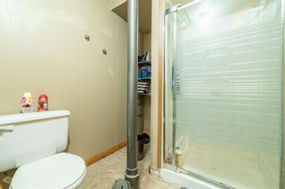 Photo 22: 4333 58 Street NE in Calgary: Temple Detached for sale : MLS®# A1092710