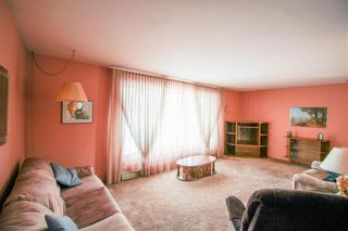 Photo 9: 132 Vryenhoek Crescent in Winnipeg: Residential for sale (3F)  : MLS®# 202005881
