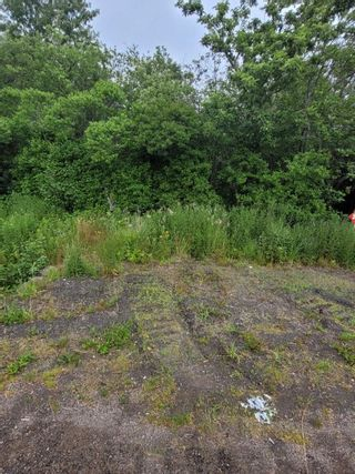 Photo 9: Lot NO 217 Highway in Roxville: 401-Digby County Vacant Land for sale (Annapolis Valley)  : MLS®# 202115919