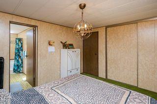 Photo 29: 5011 45 Avenue: Calmar House for sale : MLS®# E4265874