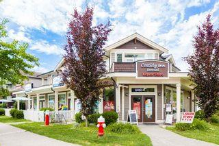 "Photo 36: 24167 102 Avenue in Maple Ridge: Albion House for sale in ""Homestead"" : MLS®# R2462813"