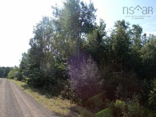 Photo 5: Watt Road in Hedgeville: 108-Rural Pictou County Vacant Land for sale (Northern Region)  : MLS®# 202122216