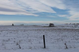 Photo 7: RGE RD 272 TWP RD 314: Rural Mountain View County Agriculture for sale : MLS®# C4220299
