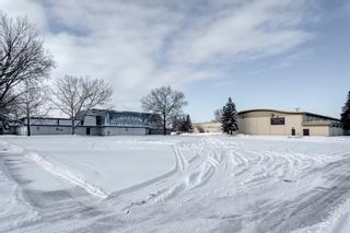 Photo 46: 855 13 Avenue NE in Calgary: Renfrew Detached for sale : MLS®# A1064139