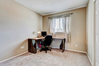 Photo 22: 101 Copperfield Gardens SE in Calgary: House for sale : MLS®# C4019487