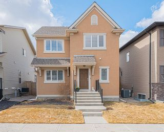 Main Photo: 17 Elgin Meadows Link in Calgary: McKenzie Towne Detached for sale : MLS®# A1094478