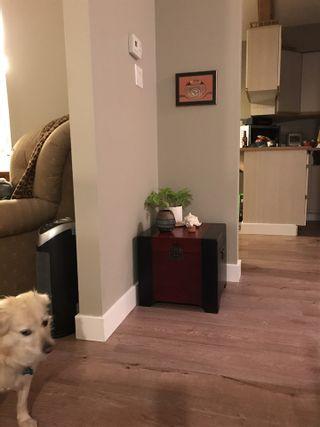 Photo 4: 11724 209 Street in Maple Ridge: Southwest Maple Ridge House for sale : MLS®# R2434650