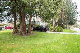 Photo 3: 5565 8A Avenue in Delta: Tsawwassen Central House for sale (Tsawwassen)  : MLS®# R2581470