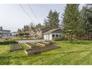 Photo 42: 12387 MOODY Street in Maple Ridge: West Central House for sale : MLS®# R2258400