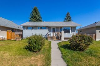 Photo 18: 4628 3 Street NE in Calgary: Greenview Detached for sale : MLS®# A1128741