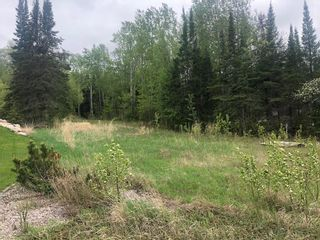 Photo 4: 97 Tall Timber Road in Lac Du Bonnet: Tall Timber Residential for sale (R28)  : MLS®# 202011857