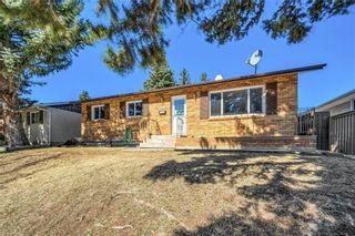 Photo 4: 4931 MARIAN Road NE in Calgary: Marlborough Detached for sale : MLS®# C4304951