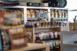 Photo 17: 4424 17 Street in Edmonton: Zone 30 Business for sale : MLS®# E4204352