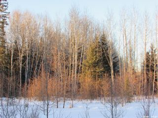 Photo 15: RM 488 Choiceland off the Grid 4.98-acre Acreage in Torch River: Residential for sale (Torch River Rm No. 488)  : MLS®# SK851792