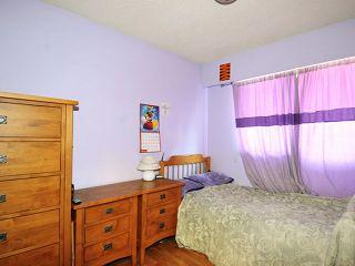 "Photo 16: 20480 THORNE Avenue in Maple Ridge: Southwest Maple Ridge House for sale in ""WEST MAPLE RIDGE"" : MLS®# V1132632"