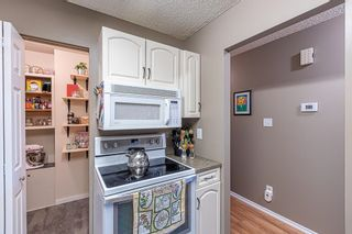 Photo 15: 132 70 WOODLANDS Road: St. Albert Carriage for sale : MLS®# E4261365