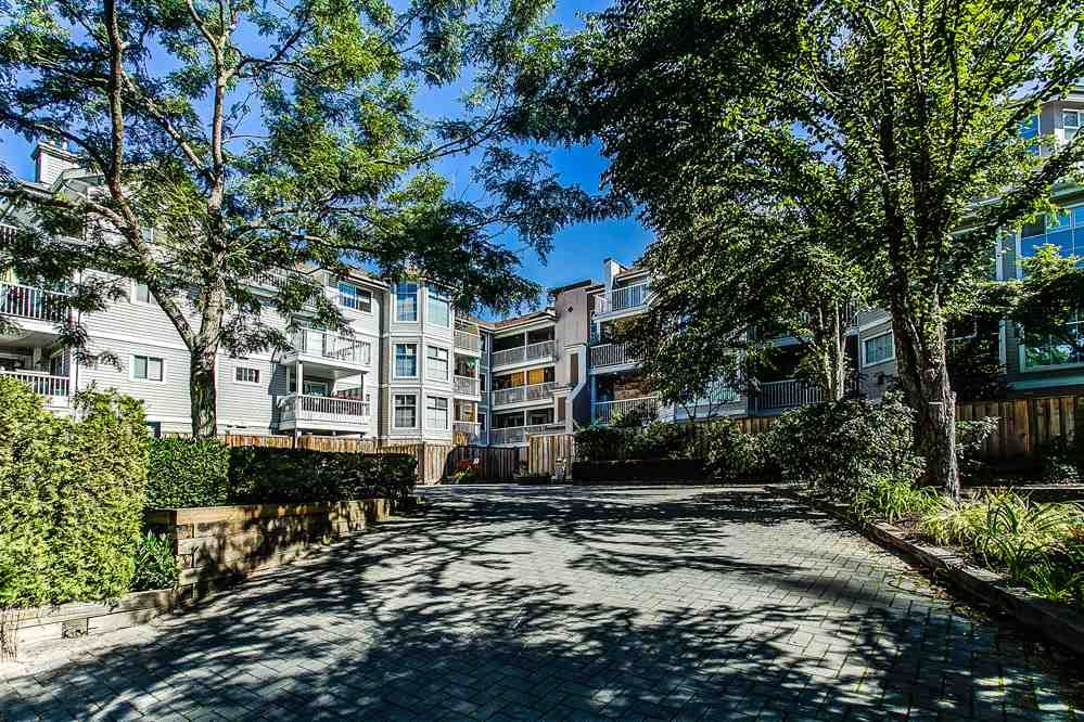 "Main Photo: 103 2678 DIXON Street in Port Coquitlam: Central Pt Coquitlam Condo for sale in ""SPRINGDALE"" : MLS®# R2202418"
