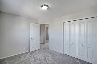 Photo 23: 253 Elgin Way SE in Calgary: McKenzie Towne Detached for sale : MLS®# A1087799