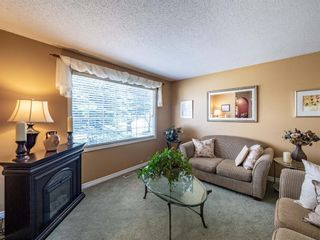 Photo 5: 223 Tanner Drive SE: Airdrie Detached for sale : MLS®# A1101335