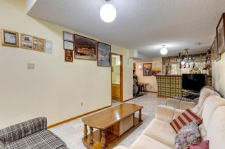 Photo 31: 147 Templevale Place NE in Calgary: Temple Detached for sale : MLS®# A1144568