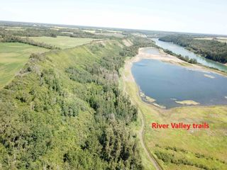 Photo 4: 27313 Twp Road 505: Rural Parkland County Rural Land/Vacant Lot for sale : MLS®# E4255712