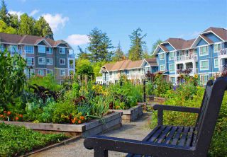 """Photo 2: 412 16398 64 Avenue in Surrey: Cloverdale BC Condo for sale in """"The Ridge at Bose Farms"""" (Cloverdale)  : MLS®# R2289381"""
