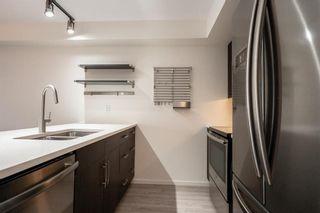 Photo 8: 219 670 Hugo Street South in Winnipeg: Lord Roberts Condominium for sale (1Aw)  : MLS®# 202116552