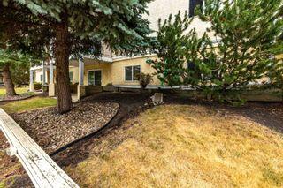 Photo 31:  in Edmonton: Zone 08 Condo for sale : MLS®# E4255270