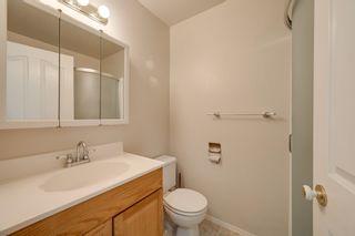 Photo 23: 1821 232 Avenue in Edmonton: Zone 50 House for sale : MLS®# E4251432