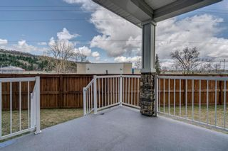 Photo 43: 1603 46 Street NW in Calgary: Montgomery Semi Detached for sale : MLS®# A1103899
