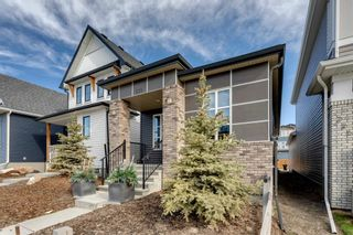 Photo 38: 230 Lucas Parade NW in Calgary: Livingston Detached for sale : MLS®# A1057760