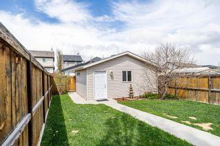 Photo 36: 145 Silverado Plains Close SW in Calgary: Silverado Detached for sale : MLS®# A1109232