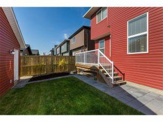 Photo 36: 928 EVANSTON Drive NW in Calgary: Evanston House for sale : MLS®# C4034736