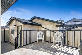 Photo 32: 145 Saddlehorn Crescent NE in Calgary: Saddle Ridge Detached for sale : MLS®# A1109018