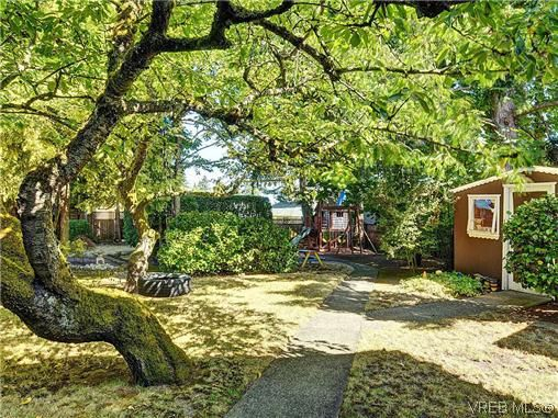 Photo 20: Photos: 770 Claremont Avenue in VICTORIA: SE Cordova Bay Residential for sale (Saanich East)  : MLS®# 318618