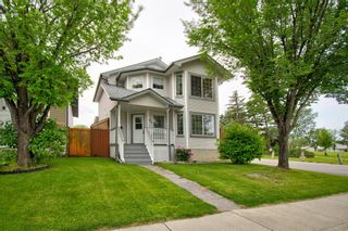 Photo 1: 63 MT Apex Green SE in Calgary: McKenzie Lake Detached for sale : MLS®# A1009034