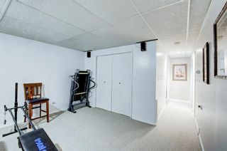 Photo 26: 183 Brabourne Road SW in Calgary: Braeside Detached for sale : MLS®# A1064696