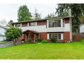 Photo 1: 9159 APPLEHILL Crescent in Surrey: Queen Mary Park Surrey House for sale : MLS®# R2407744