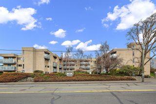 Photo 2: 104 1366 Hillside Ave in : Vi Oaklands Condo for sale (Victoria)  : MLS®# 867040
