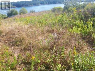 Photo 4: 637 Wellington Road in Blacks Harbour: Vacant Land for sale : MLS®# NB060608