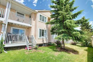 Photo 48: 154 388 Sandarac Drive NW in Calgary: Sandstone Valley Row/Townhouse for sale : MLS®# A1115422
