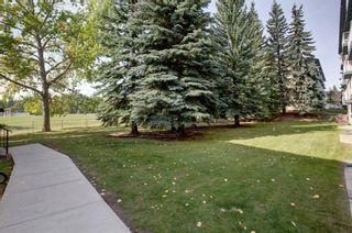 Photo 27: 406C 5601 Dalton Drive NW in Calgary: Dalhousie Apartment for sale : MLS®# A1146275