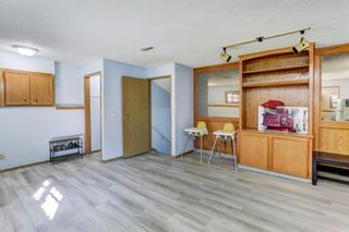 Photo 22: 27 Martinwood Road NE in Calgary: Martindale Detached for sale : MLS®# A1095419