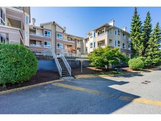 """Photo 1: 301 19721 64 Avenue in Langley: Willoughby Heights Condo for sale in """"THE WESTSIDE"""" : MLS®# R2605383"""